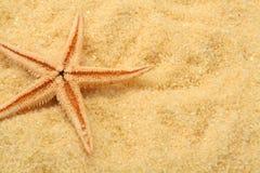 Starfish- und Strandsand Lizenzfreies Stockfoto