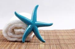 Starfish und Tuch Stockfotografie