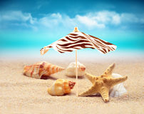 Starfish under umbrella on the summer beach. Royalty Free Stock Photo