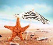 Starfish under umbrella on the summer beach. Stock Photo