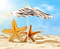 Starfish under umbrella on the summer beach. Royalty Free Stock Photography