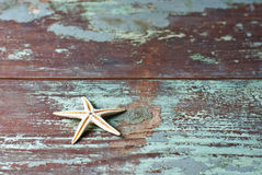 Starfish on Vintage wood pattern Royalty Free Stock Photos