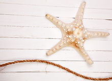 Starfish on a white background wooden table. Starfish on a background wooden table Royalty Free Stock Image
