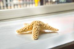 Starfish on windowsill Stock Image