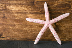 Starfish on wood Stock Image
