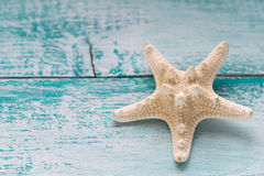 Starfish on wooden background Stock Image