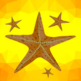 Starfish on a Yellow Polygonal Background Stock Photo