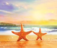 Starfish on yellow sand near the sea Stock Photo