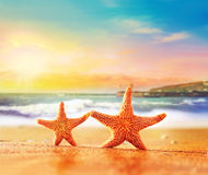 Starfish on yellow sand near the sea Royalty Free Stock Photography