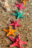 Starfishes on the beach Royalty Free Stock Photos
