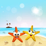 Starfishes on the beach Royalty Free Stock Photo
