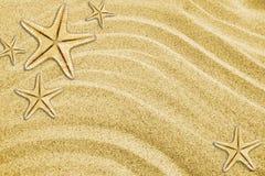 Starfishes on beach sand Stock Photos
