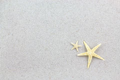 Starfishes on the beach, vacation postcard Stock Images