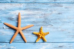 Starfishes on a blue rustic wooden table. Two different starfishes on a blue rustic wooden table with some blank space stock images
