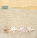 Starfishes on canvas texture Stock Photos