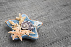 Starfishes in ceramic bowl on grey wooden background Royalty Free Stock Photos