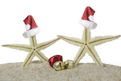 Starfishes with christmas hat Royalty Free Stock Photos