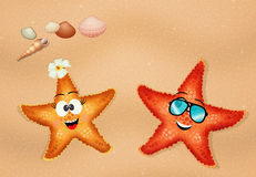 Starfishes couple on the beach Stock Photo