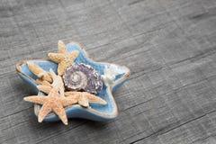 Starfishes in der keramischen Schüssel auf grauem hölzernem Hintergrund Lizenzfreie Stockfotos