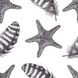 Starfishes and feathers background Stock Photography