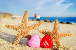 Starfishes with hearts on the sandy beach Royalty Free Stock Images
