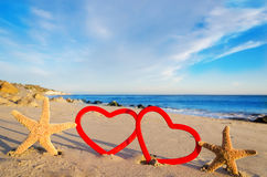 Starfishes with hearts on the sandy beach Stock Image