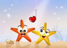 Starfishes in in love in the ocean Stock Photography