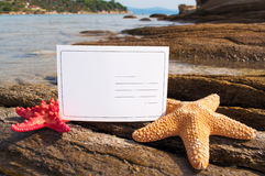 Starfishes and postcard Royalty Free Stock Image