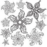Starfishes. Set of starfishes in decorative style. Vector Stock Image