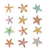 Starfishes set .hand drawn Vector Illustration Stock Photos