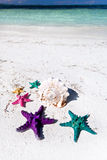 Starfishes in tropic paradise. Travel Vacation concept Stock Images