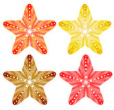 Starfishes . Vector set, EPS10. Royalty Free Stock Image