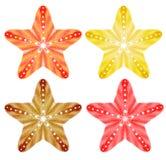 starfishes Vektorsatz, EPS10 Lizenzfreies Stockbild