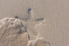 Starfishprint auf dem Strand stockfotografie