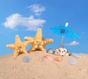 Starfishs и seashells на песке пляжа Стоковое Фото
