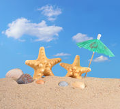 Starfishs и seashells на песке пляжа Стоковые Изображения RF