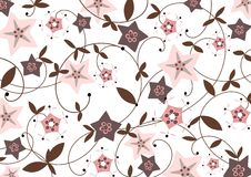 Starflower background. Pink and brown star flower background with brown foliage; multipurpose Stock Photography