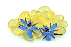 Starflower Oil Stock Photo