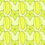 Starfruit or carambola. Seamless pattern with. Fruits. Hand-drawn background. Real watercolor drawing Royalty Free Stock Photos