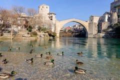 Stari mest gammalt bropanaromalandskap med staden för lösa änder av Mostar i Bosnien royaltyfri fotografi