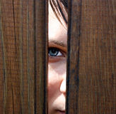 Staring. Eye behind wooden fence staring Royalty Free Stock Image