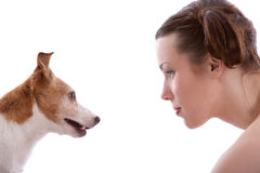 Staring contest. Woman and her jack russel terrier staring at eachother Royalty Free Stock Photography