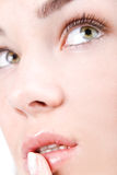 Staring eyes. Beautiful woman face with staring shiny eyes close-up Royalty Free Stock Photography