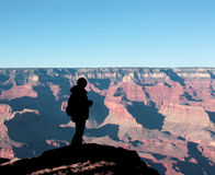 Staring at the Grand Canyon. A person looking at the Grand Canyon wonderful view, Arizona (USA stock images