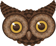 Staring Owl Head. Illustration Royalty Free Stock Image