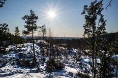 Staring at the sun. A cold winter day in January, even with the sun up it was -17 Celsius that day Royalty Free Stock Photo