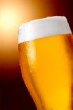 stark öl Arkivbild