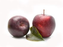 Stark apples Royalty Free Stock Photo