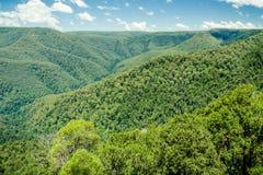 Stark bewaldete Berge und Täler Lizenzfreie Stockfotografie