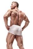 Stark idrotts- mankonditionmodell som poserar tillbaka muskler, triceps, royaltyfri foto